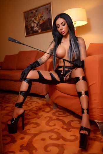 BDSM escort, Dominatrix fendom